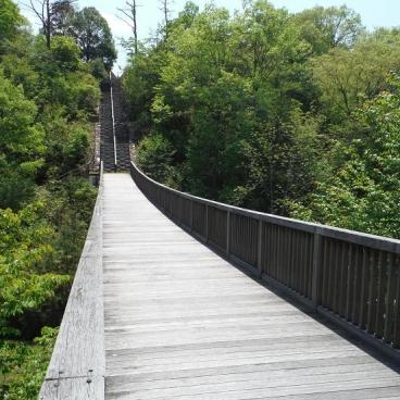 野草園近くの橋
