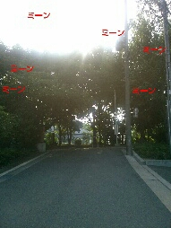fc2_2014-07-09_08-37-12-250.jpg