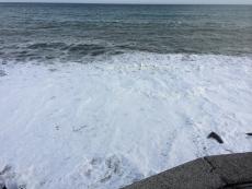 昨日に引き続き風が強い。今日は波打ち際が泡立ってクリームみたいになってる。