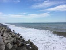 なんかずっと海岸近くは濁ってるっぽいな。