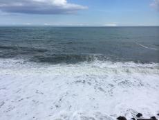 やけに磯臭い。これも台風の影響?波高いし泡立ってる。