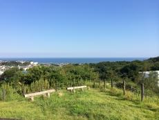 今日もなかなかの青色。けど昨日に比べると若干茶色っぽい?#海 #海photo