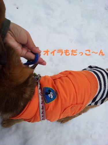 雪の散歩コース10
