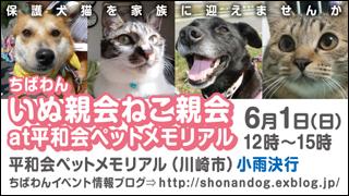 heiwakai_20140601_320x180.jpg