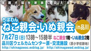 nekoinuoyakai20140727_320x180.jpg