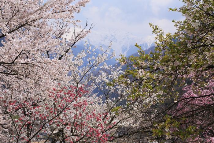 2014_0419_24.jpg
