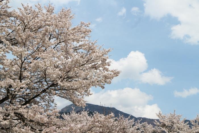 2014_0419_39.jpg