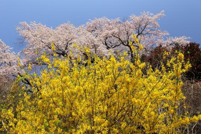 2014_0419_42.jpg