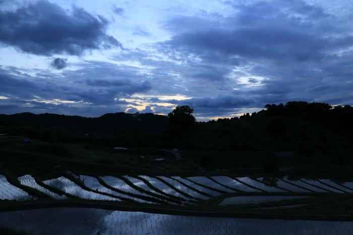 2014_0607_15.jpg