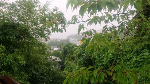 140827きり雨