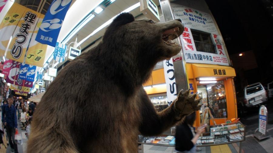 tanuki009_20140812084349b36.jpg