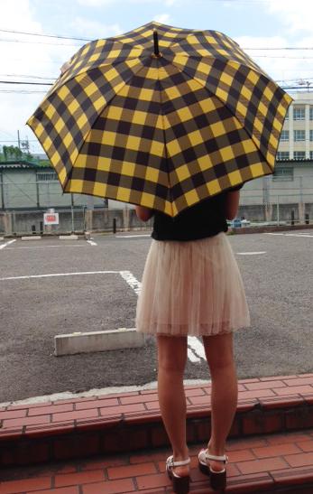 チェック傘 さす
