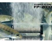 FP-2000_use (180x150)