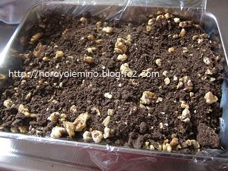 0306チョコクッキー3