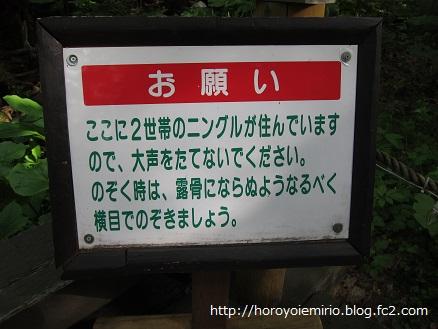0703富良野6