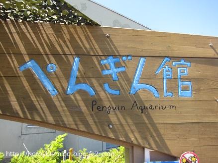 0711旭山動物園7