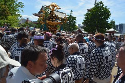 三社祭 浅草寺境内の神輿