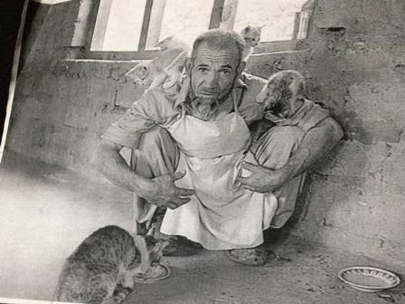 猫に囲まれるハイダー爺