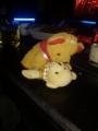 Gla_Bear.jpg