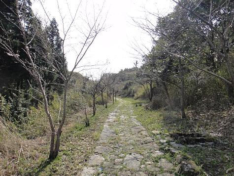 130330 駟馳山の石畳道_015