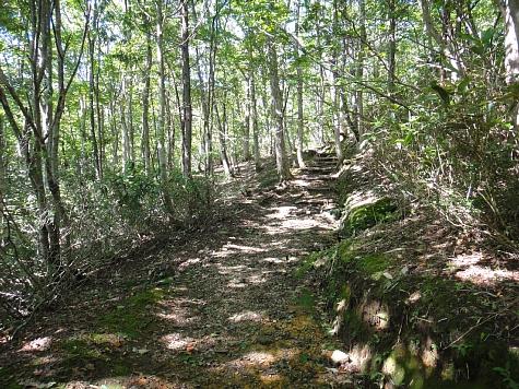 130919岡山県立森林公園011