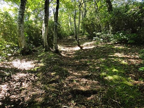 130919岡山県立森林公園038