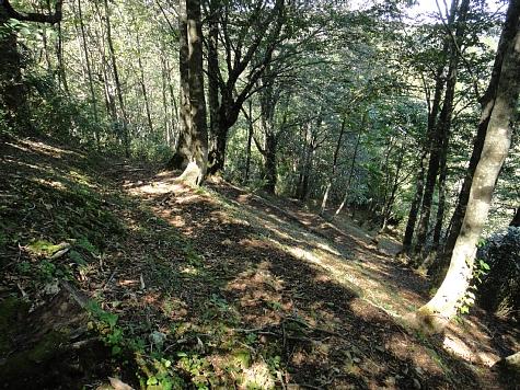 130919岡山県立森林公園047