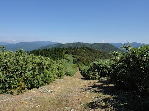 130919岡山県立森林公園066