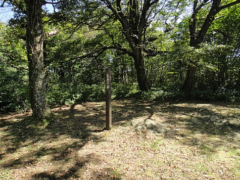 130919岡山県立森林公園065