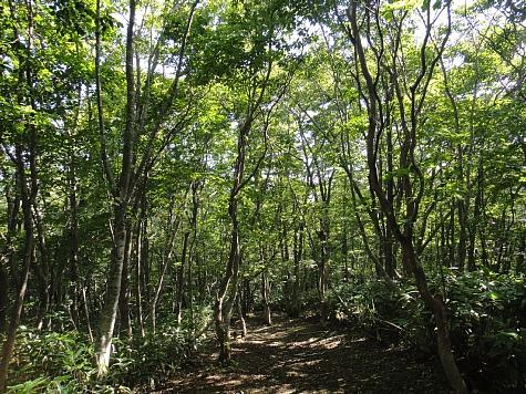 130919岡山県立森林公園088