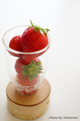 l500strawberry.jpg