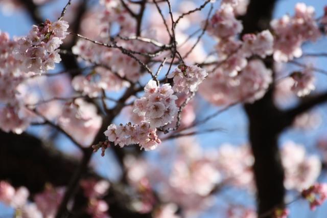 2014/03/15 その1