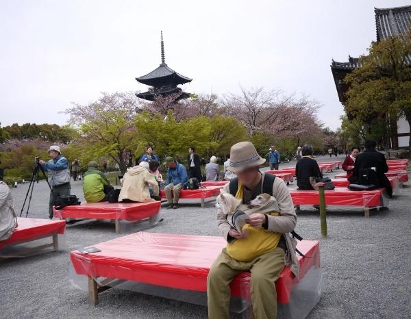 京都っぽい・笑