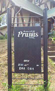 プラナス (1)