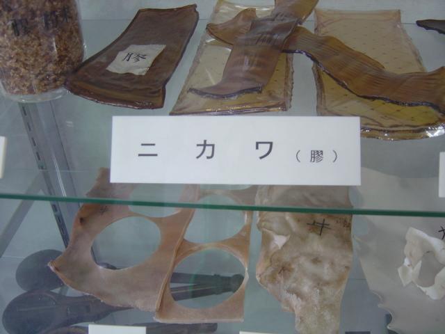 bokujyuu (10)