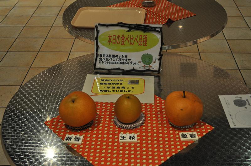 kurayoshi (47)