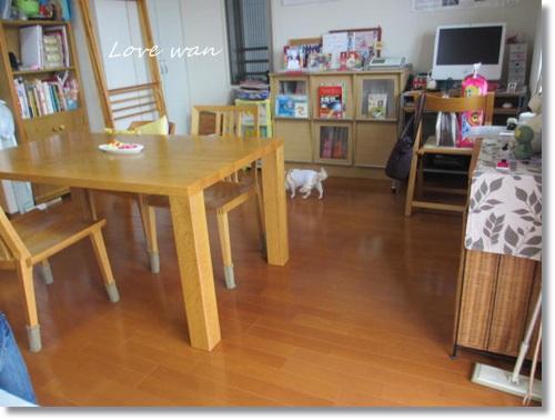 mini2IMG_8170.jpg