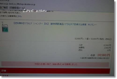 mini2P1340107.jpg