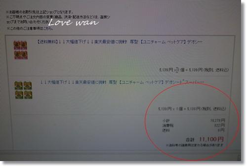 mini2P1340110.jpg