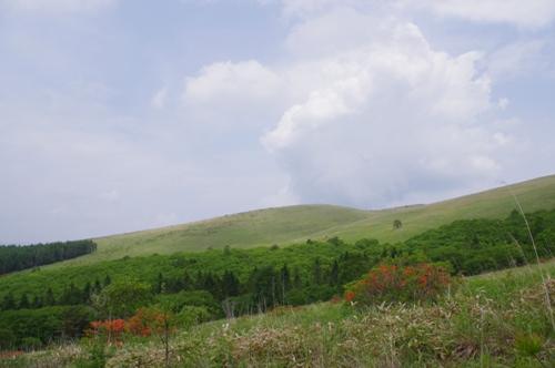 201406kurumayama51.jpg