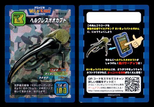野生の王者 WILD KING WK-015 ヘラクレスオオカブト