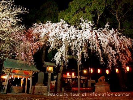 三島八幡神社5