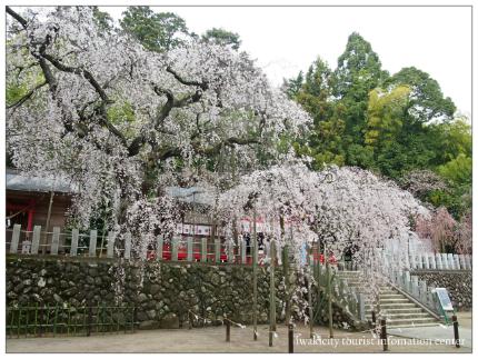 小川諏訪神社3