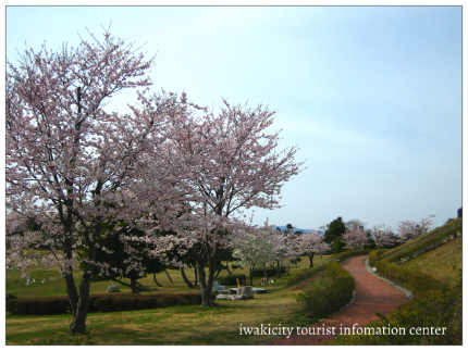 三崎公園4
