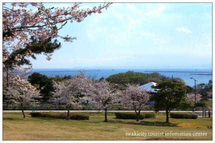 三崎公園5
