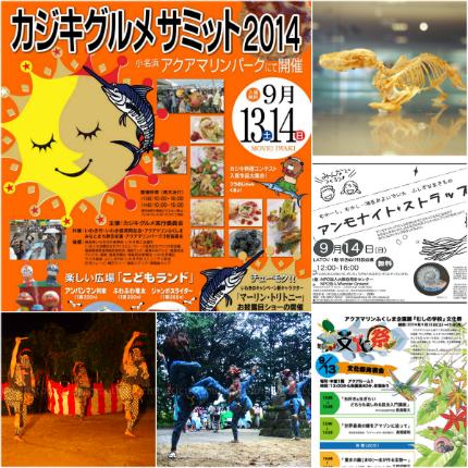 週末イベント情報(平成26年9月12日)2