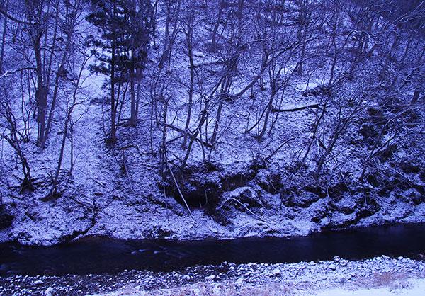 早春の豊沢川
