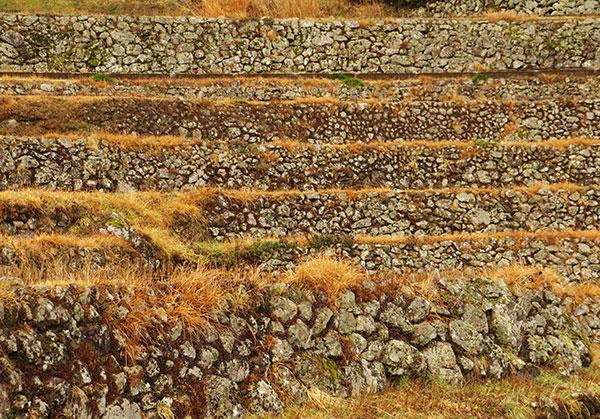梼原町の棚田の石垣