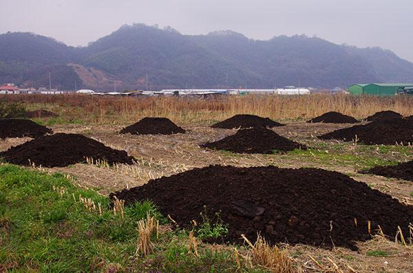 笠岡干拓地の堆肥の山