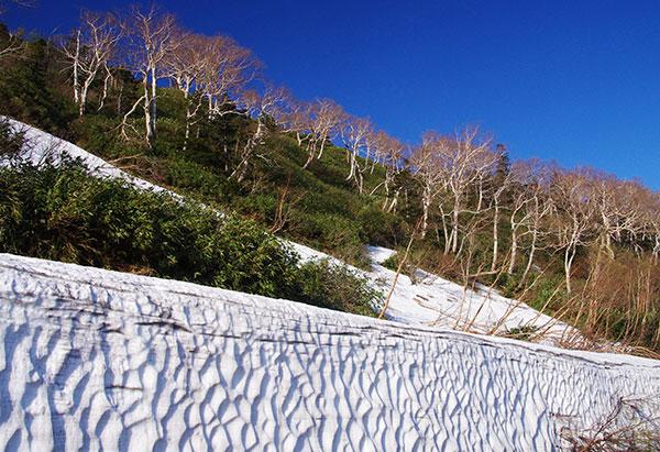 見返り峠の雪壁